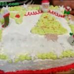 Christmas Cake Tutorial – Happy Holidays