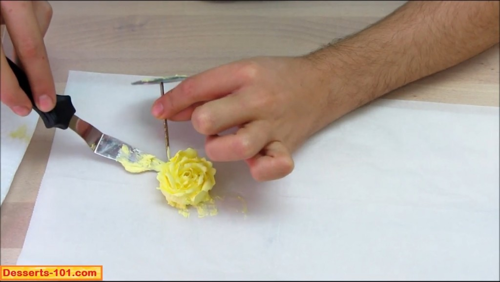 Buttercream rose transfered to parchment paper